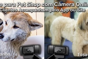 Site para Pet Shop com Câmera Online via Aplicativo e Site