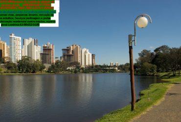 Marido de Aluguel em Londrina – Atendemos Londrina e Região