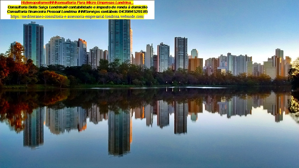 Avenida Robert Koch Dumont contabilidade  Comprovante de Renda – Londrina Pr