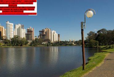 Avenida Madre Leonia Milito|Ayrton Senna contabilidade | Comprovante d